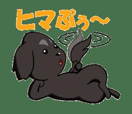 Every day of pet dog jazz sticker #157346