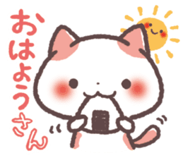 Cute Cats Japanese Kansai Words Stickers sticker #157397