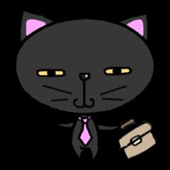 salarycat