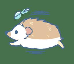 Hedgehog&Squirrel sticker #158813