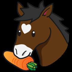 No choice I like I like horse