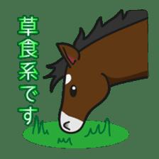 No choice I like I like horse sticker #159819