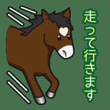 No choice I like I like horse sticker #159821