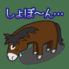 No choice I like I like horse sticker #159830