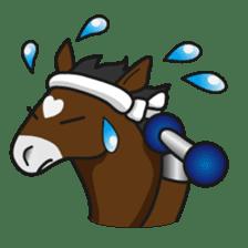 No choice I like I like horse sticker #159836