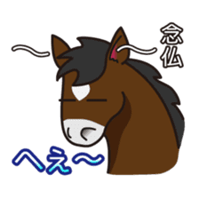 No choice I like I like horse sticker #159843