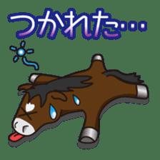 No choice I like I like horse sticker #159852