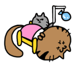cat + cat sticker #161290