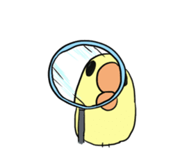 Chick of pouty mouth sticker #165615