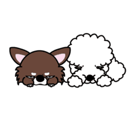 UG U+x+U DOGS (Chihuahua and Poodle) sticker #167689
