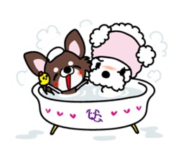 UG U+x+U DOGS (Chihuahua and Poodle) sticker #167695