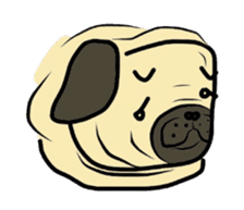 Pugsaku sticker #167904