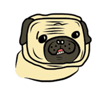 Pugsaku sticker #167935