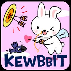 The Kewbbit