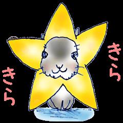 Small Rabbit Story