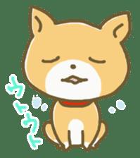 "The dog named ""MAMETA"" sticker #174437"