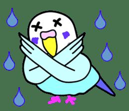 Cute Bluenee of the budgie bird sticker #183415