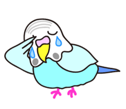 Cute Bluenee of the budgie bird sticker #183426
