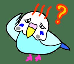 Cute Bluenee of the budgie bird sticker #183428