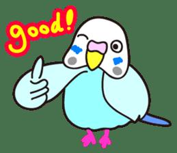 Cute Bluenee of the budgie bird sticker #183430