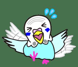 Cute Bluenee of the budgie bird sticker #183433