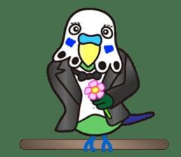 Cute Bluenee of the budgie bird sticker #183438