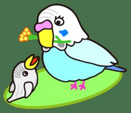 Cute Bluenee of the budgie bird sticker #183440