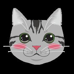 SABATORA realistic face of cat