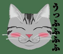 SABATORA realistic face of cat sticker #185626
