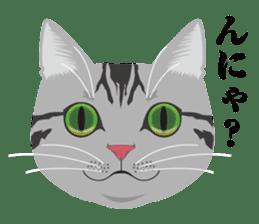 SABATORA realistic face of cat sticker #185629