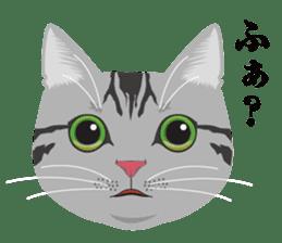 SABATORA realistic face of cat sticker #185630