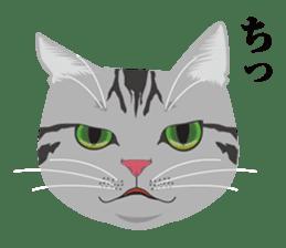 SABATORA realistic face of cat sticker #185631