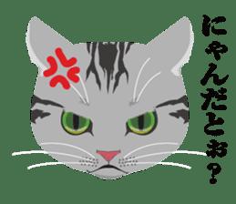 SABATORA realistic face of cat sticker #185632
