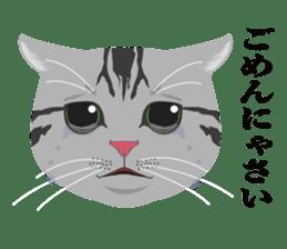 SABATORA realistic face of cat sticker #185635