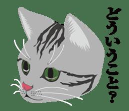 SABATORA realistic face of cat sticker #185647