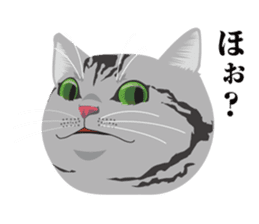SABATORA realistic face of cat sticker #185651