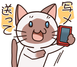 stamp of the Siamese cat sticker #186981