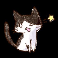pochi_cat
