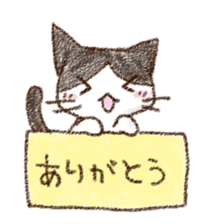 pochi_cat sticker #190515