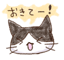 pochi_cat sticker #190531