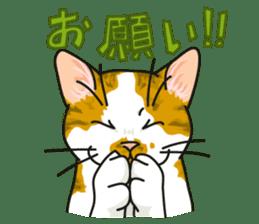 NO CAT NO LIFE Satowo cat stamp2 sticker #196166