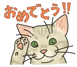 NO CAT NO LIFE Satowo cat stamp2 sticker #196167
