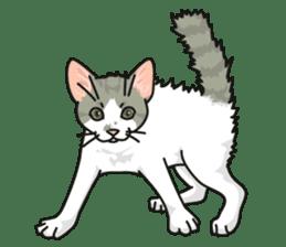 NO CAT NO LIFE Satowo cat stamp2 sticker #196168