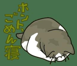 NO CAT NO LIFE Satowo cat stamp2 sticker #196171