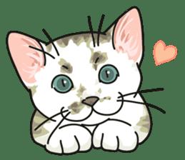 NO CAT NO LIFE Satowo cat stamp2 sticker #196175