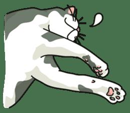 NO CAT NO LIFE Satowo cat stamp2 sticker #196181