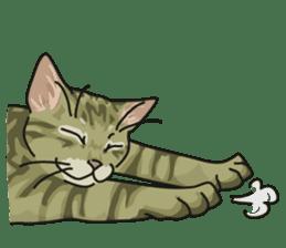NO CAT NO LIFE Satowo cat stamp2 sticker #196185