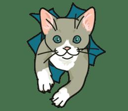 NO CAT NO LIFE Satowo cat stamp2 sticker #196186