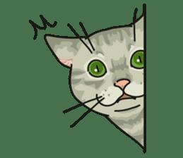 NO CAT NO LIFE Satowo cat stamp2 sticker #196188