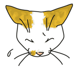 NO CAT NO LIFE Satowo cat stamp2 sticker #196189